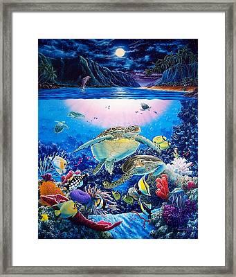 Turtle Bay Framed Print by Daniel Bergren
