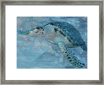 Turtle - Beneath The Waves Series Framed Print by Jack Zulli