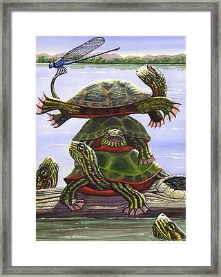 Turtle Circus Framed Print