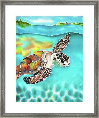 Turtle Creek Framed Print