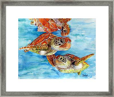 Turtle Crossing Framed Print by Maria Barry