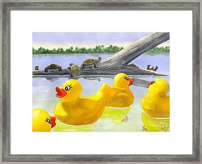 Turtle Log Framed Print by Catherine G McElroy