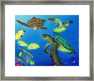Turtle Towne Framed Print by Angie Hamlin