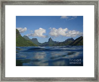 Turtle View Of Paradise Framed Print by Chad Natti