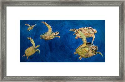 Turtles Framed Print by Julia Collard