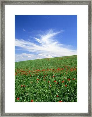 Tuscan Clouds Framed Print by Michael Hudson