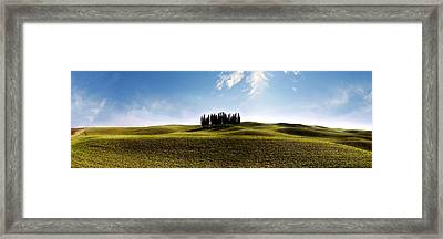 Tuscan Cypress Tree Framed Print