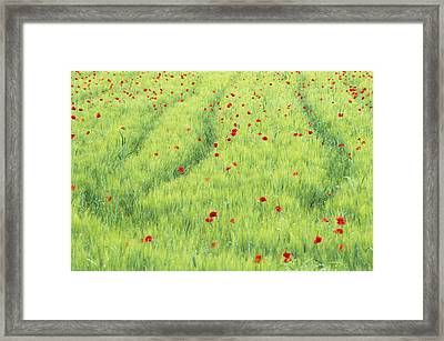 Tuscan Monet Framed Print by Eggers Photography