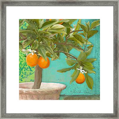 Tuscan Orange Topiary - Damask Pattern 3 Framed Print
