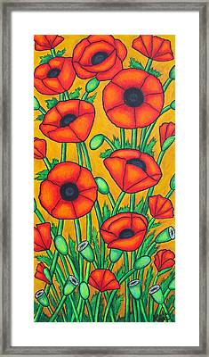 Tuscan Poppies Framed Print