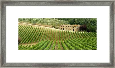 Tuscan Symmetry Framed Print
