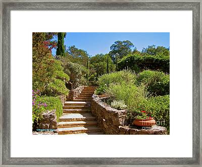 Tuscan Villa In California Framed Print