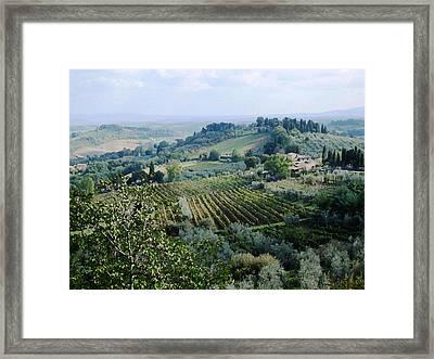 Tuscan Vines Framed Print