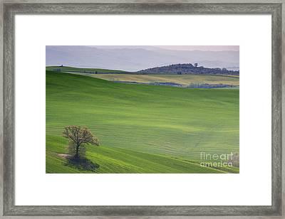Tuscany Landscape Framed Print by Ana Mireles