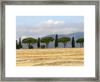 Framed Print featuring the digital art Tuscany Trees by Julian Perry