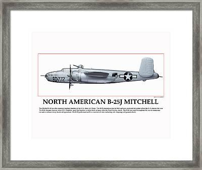 Tuskegee Aviator Bomber Framed Print