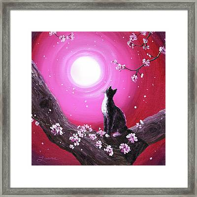 Tuxedo Cat In Cherry Blossoms Framed Print by Laura Iverson