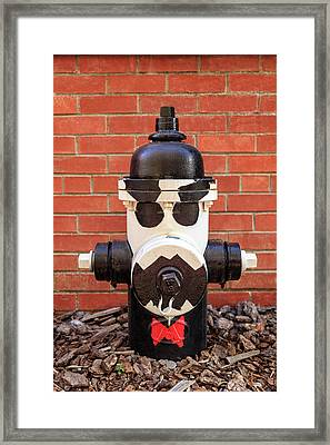 Framed Print featuring the photograph Tuxedo Hydrant by James Eddy
