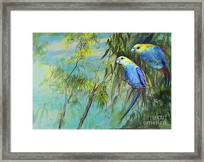 Two Pale-faced Rosellas Framed Print