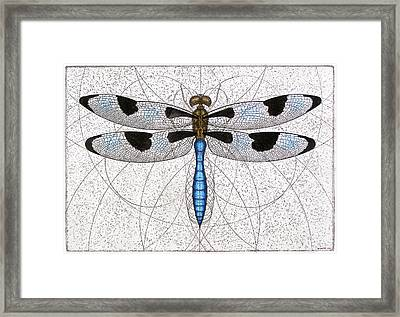 Twelve Spotted Skimmer Framed Print
