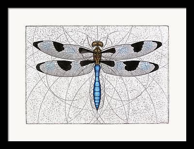 Invertebrates Mixed Media Framed Prints
