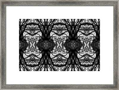 Twelve Trees Framed Print