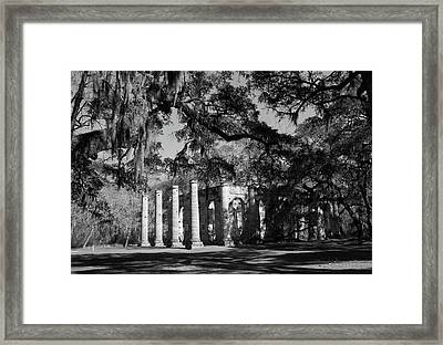 Twice Burned And Still Standing Framed Print by Michael Stothard