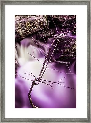 Twig At The Waterfall In Hdr Framed Print by Tommytechno Sweden