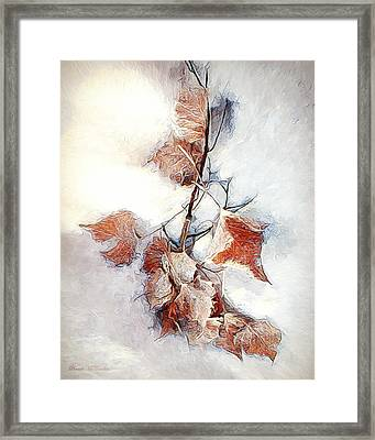 Framed Print featuring the photograph Twigged by Pennie  McCracken
