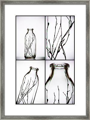 Twigs - Four Panel Framed Print by Tom Mc Nemar