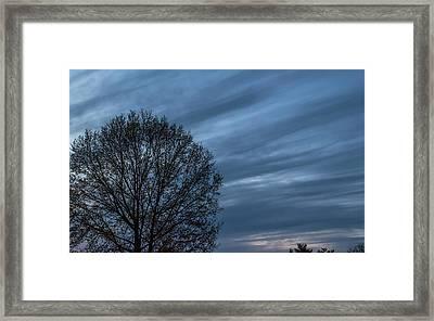 Twilght Delight - Framed Print
