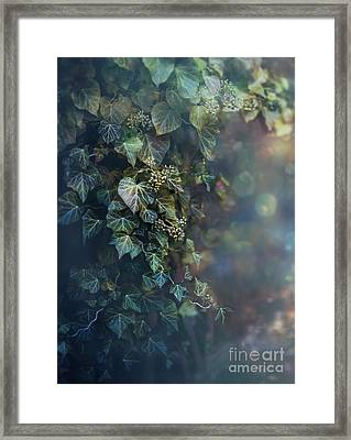 Twilight And Shadow Framed Print