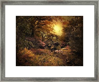 Twilight Autumn Garden Framed Print by Jessica Jenney