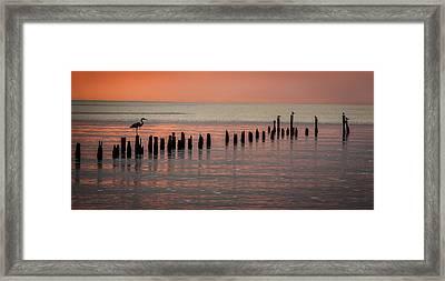 Twilight Colors Framed Print