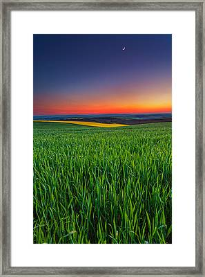Twilight Fields Framed Print by Evgeni Dinev