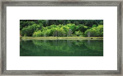 Twilight Glow Framed Print by Donna Blackhall