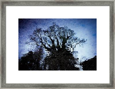 Twilight Illusion 2010 Framed Print by Sachiko Ide