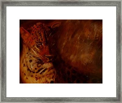 Twilight Leopard Framed Print by Arlene Rabinowitz