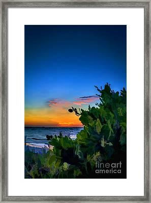 Twilight Mangrove Framed Print by Marvin Spates