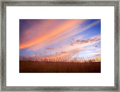 Twilight On The Grasslands Framed Print
