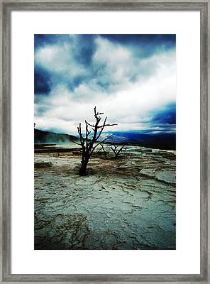 Twilight Framed Print by Sarah Bennett