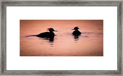 Twilight Serenade Framed Print