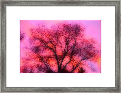 Twilight Silhouette Framed Print