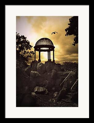 Staris Framed Prints