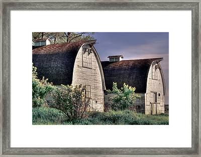 Twin Barns, Nisqually, Wa Framed Print by Greg Sigrist