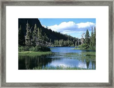 Twin Lakes And Ducks Feeding Framed Print