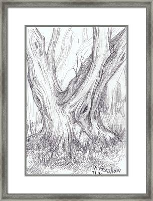 Twin Tree Framed Print by Ruth Renshaw