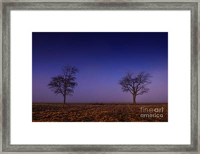 Framed Print featuring the photograph Twin Trees In The Mississippi Delta by T Lowry Wilson
