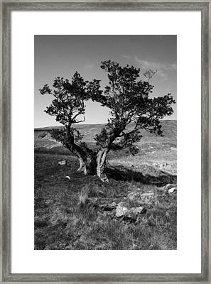 Twins Framed Print by Gabor Pozsgai
