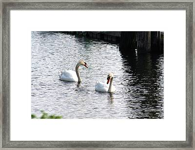 Twins Framed Print by Gerald Mitchell